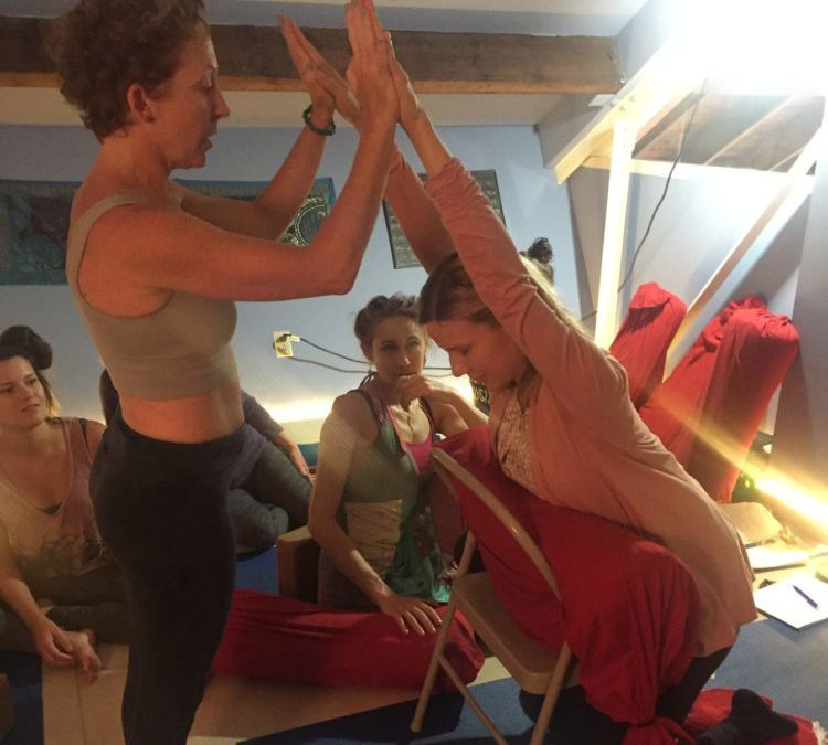 Adaptive Yoga Teacher Training – Jan 18 & 19th