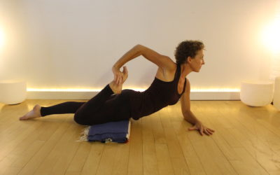 Beginner Yoga Training & Modifications Lab: May 30-31